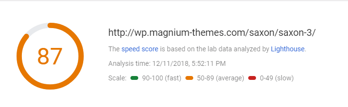 pagespeed insight of Saxon theme